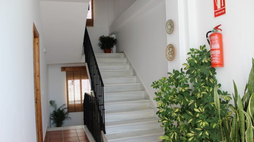 escaleras-terraza_50